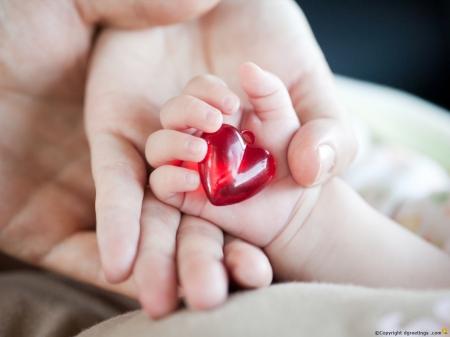 hati keluarga